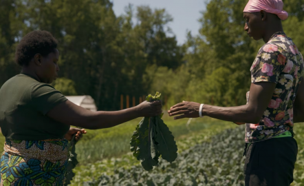 A Family Farm Brings African Produce to Portland