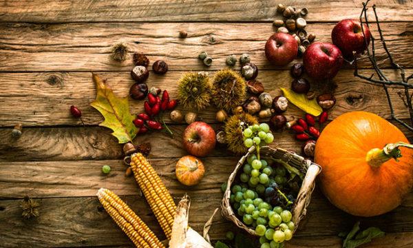 harvest-by-shutterstock-650.jpg