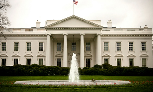 white house green party