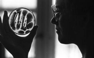 Small Acts of Scientific Civil Disobedience