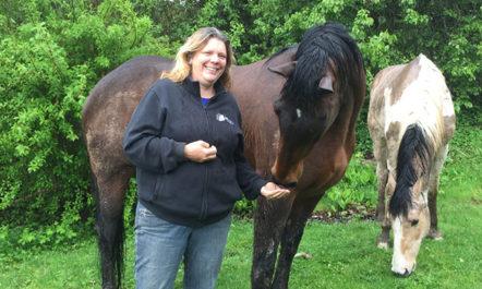 Lorna and horses.jpg