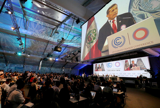 COP20 in Lima