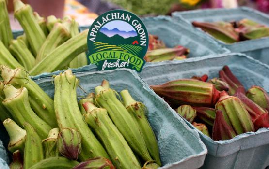 Mountain Grown: Appalachia's New Local Food Economy