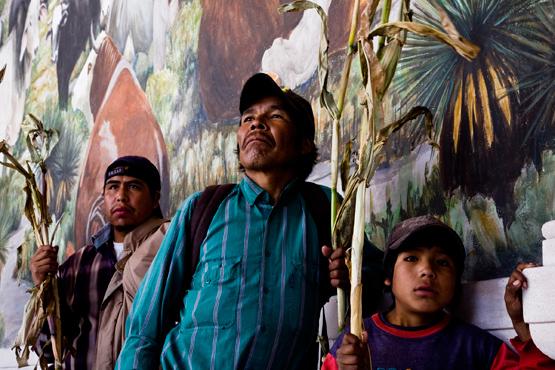 Rarumuri GMO protest