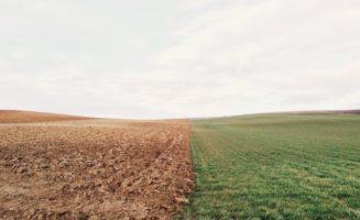 Soil Organic Farming.jpg