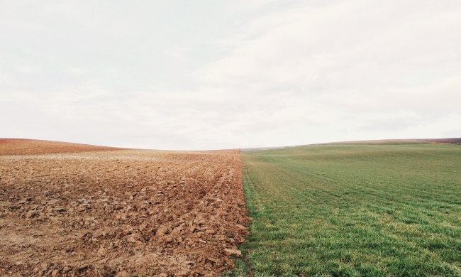 The Key to Feeding the World? It's Healthy Soil