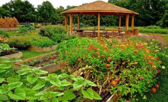The Deaver Wellness Farm at LankenauMedical Center. Photo courtesy of Lankenau.