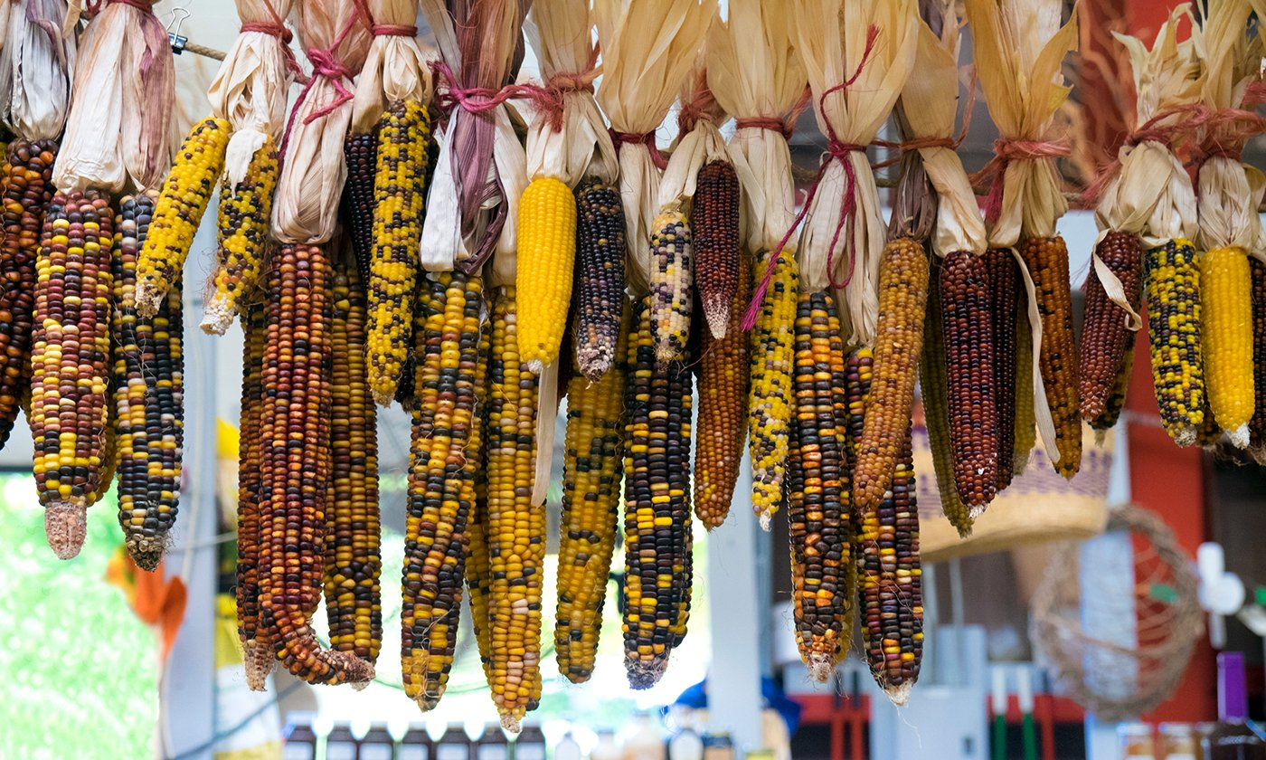Before You Try to Decolonize Your Diet, Read This