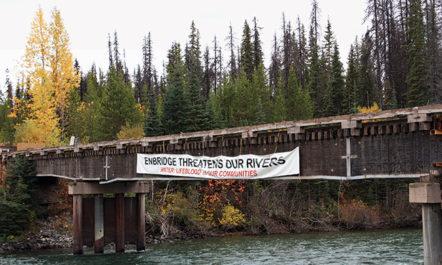 bridge650.jpg