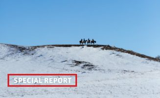 Special Report.jpg