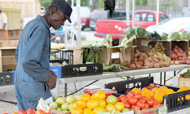 farmers-market-by-charleston-650.jpg