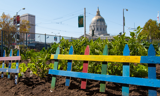 "How One San Francisco Neighborhood Became ""Immune"" to Gentrification"
