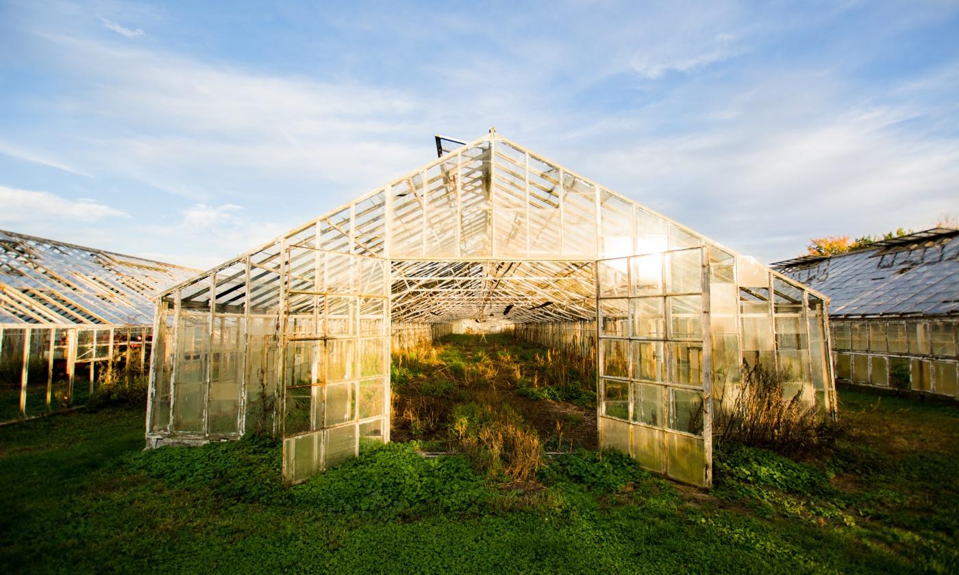 immigrant-farmers.jpg