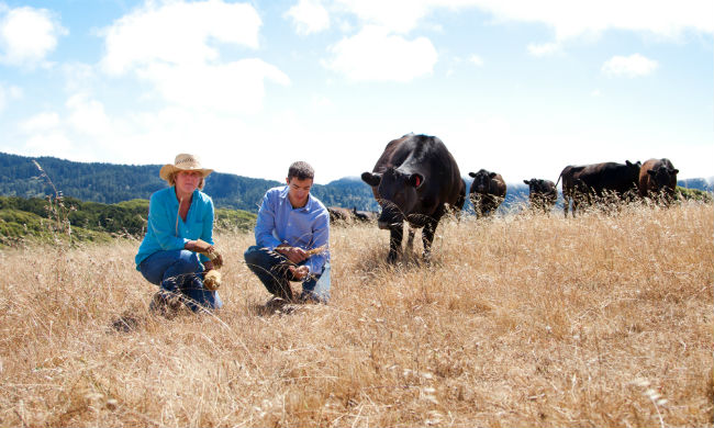 What's a Carbon Farmer? How California Ranchers Use Dirt to Tackle Climate Change