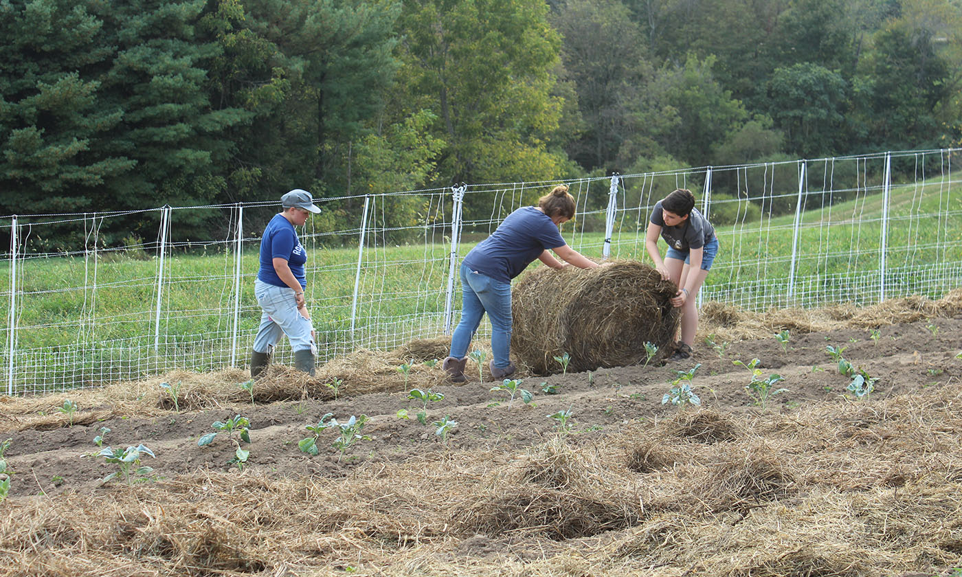 The High School Where Learning to Farm Is a Graduation Requirement