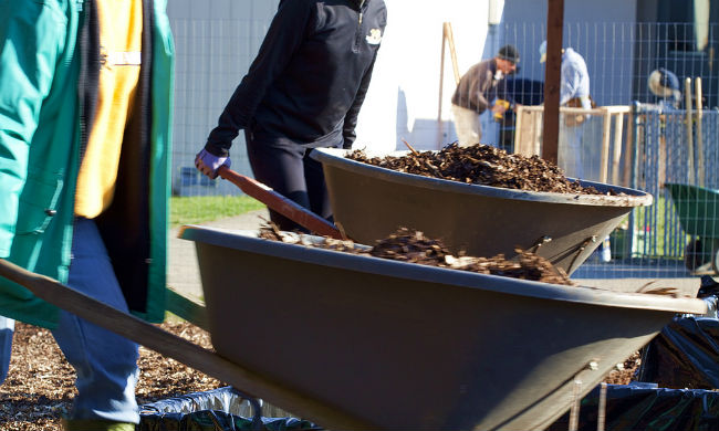 Brooklyn Youth Create Jobs (and Community Roots) Through Local Compost Program
