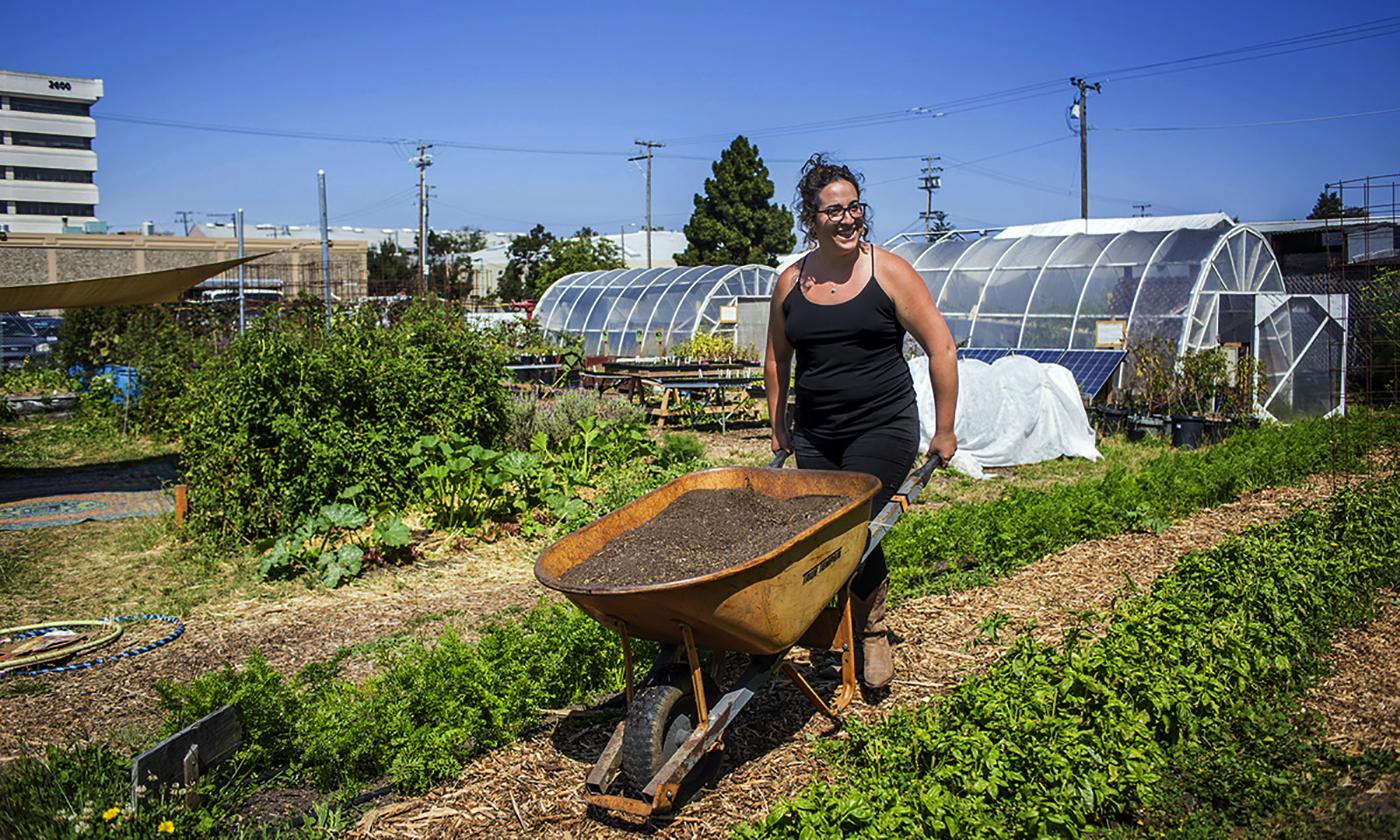 1-shmita-sustainable-farming-fallow-land-top-1.jpg