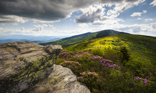 North Carolina Appalachians. Photo by Dave Allen / Shutterstock.